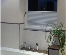 Sichtschutz Mit Badezimmerplissee